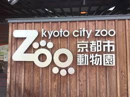 京都市動物園に行ってきました♪